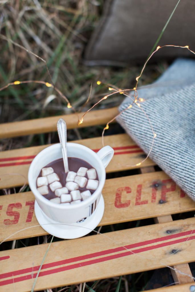 Hot chocolate in a winter picnic